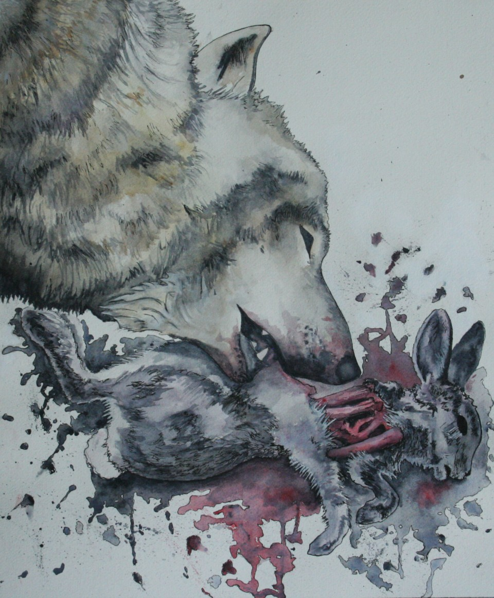 Death of a Rabbit