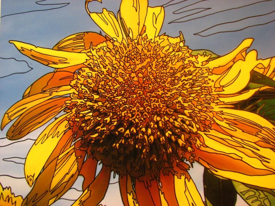Flowers Appear